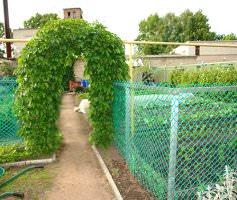 Сетка для сада и огорода